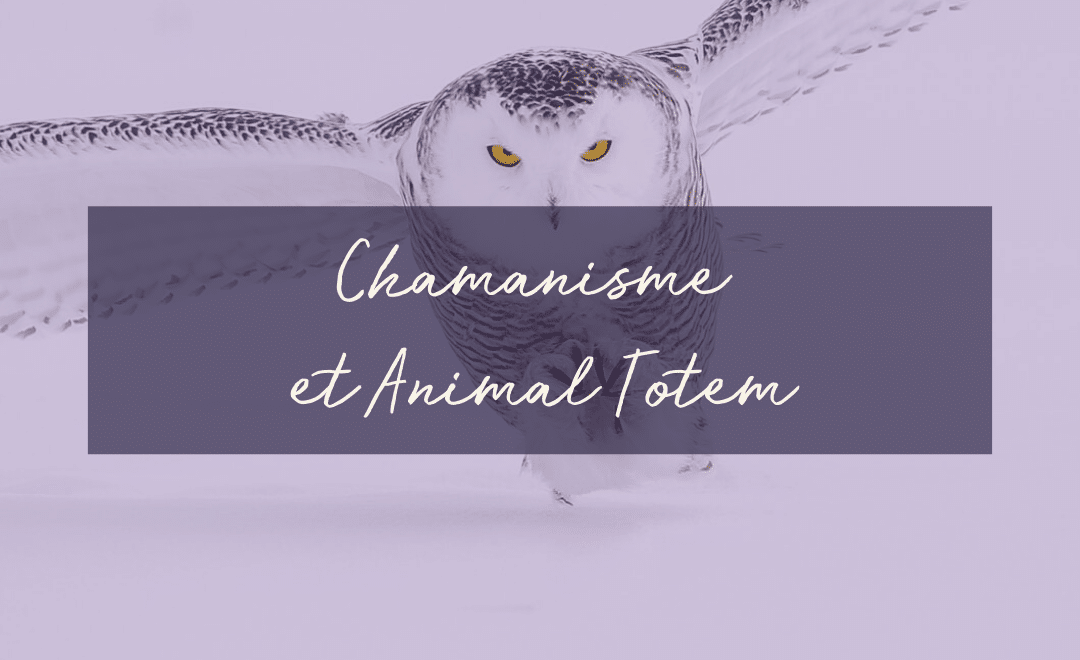Chamanisme et Animal Totem